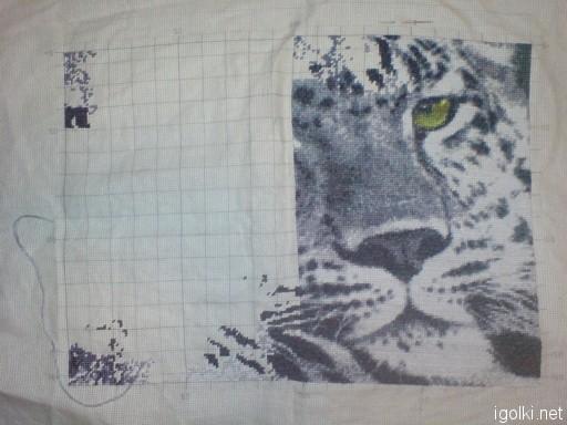 Леопард. В работе